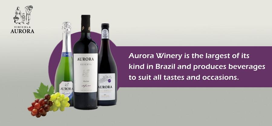 Best Wine in it's own Class - Aurora Wine from Brazil