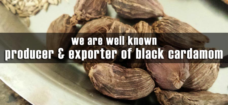 We are Producer & Exporter of Black Cardamom