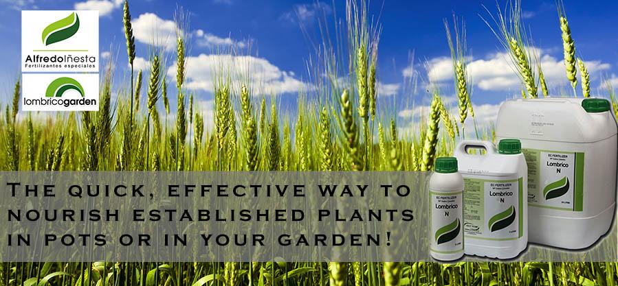 Authorized Distributor of Liquid Fertilizer - From Alfredo Inesta, Espain