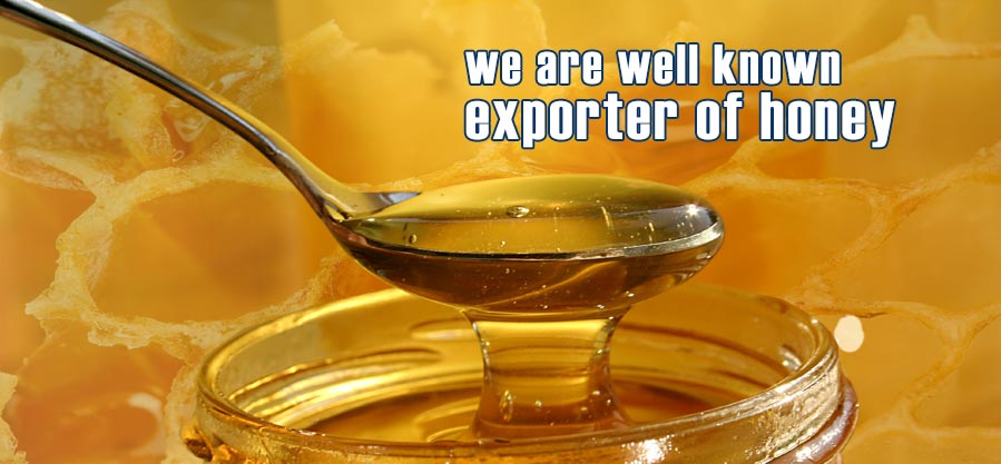 ANTCC is well known producer & exporter of Honey